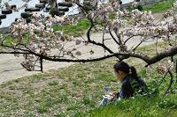 Tamagawa - Lecture assidue