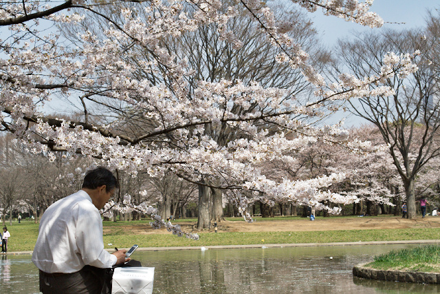 Parc de Yoyogi - Salaryman