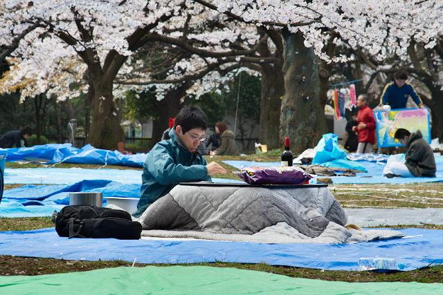 Parc de Yoyogi - Comme à la maison
