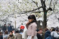 Parc de Yoyogi - Promenade innocente