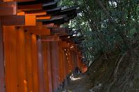 Le sanctuaire Fushimi Inari près de Kyôto et ses longs couloirs de torii