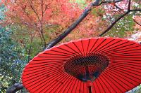 Le sanctuaire Nogi près de Roppongi