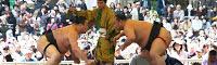 Tournoi de sumô dans l'enceinte du sanctuaire Yasukuni - Les rikishi se jettent l'un sur l'autre lors du taichiai