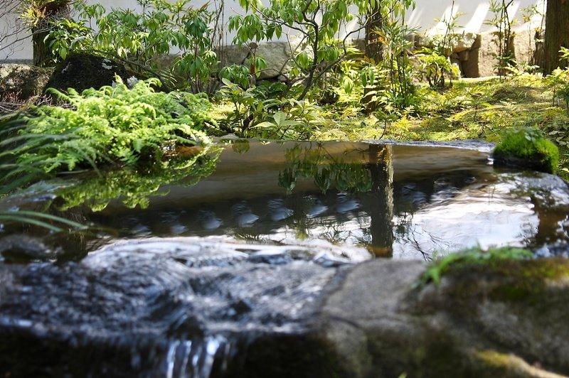 Himeji k ko en dokokade japon for Jardin kokoen