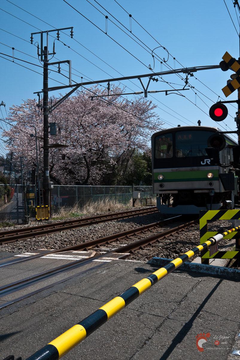 Passage à niveau sur la ligne Yokohama