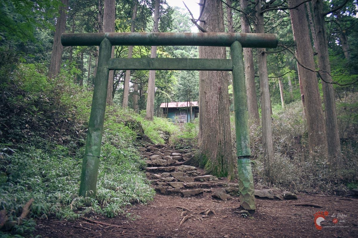 Vieux torii d'Ôtake-jinja - Mitake