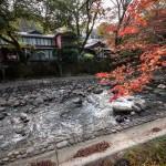 Shuzenji Onsen : l'automne commence à bercer de ses couleurs le lit de la rivière