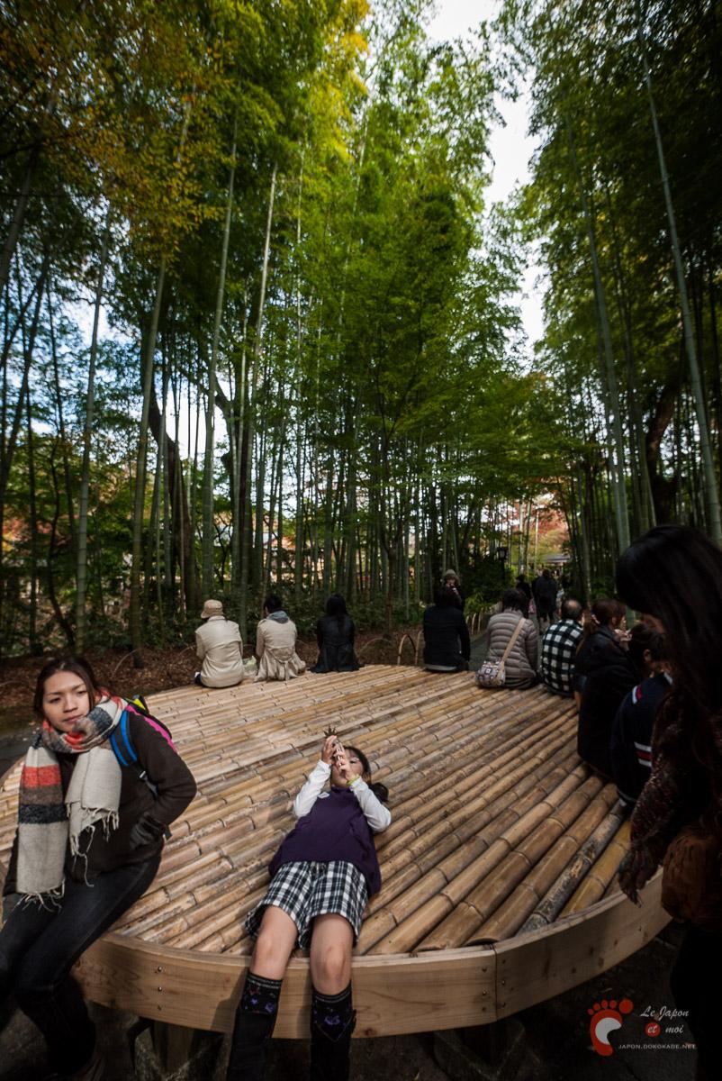 Shuzenji Onsen - Le chemin aux bambous