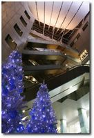 Décorations de Noël à Marunouchi et Ginza