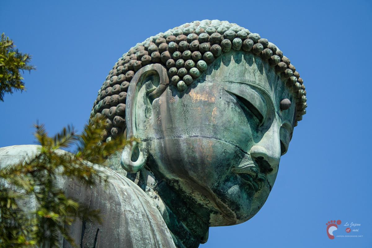 Le Daibutsu, grand bouddha, de Kamakura