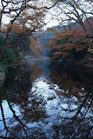Promenade en kimono dans le jardin Meiji Jingu Gyoen en automne