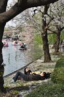 Ueno - Sieste amoureuse