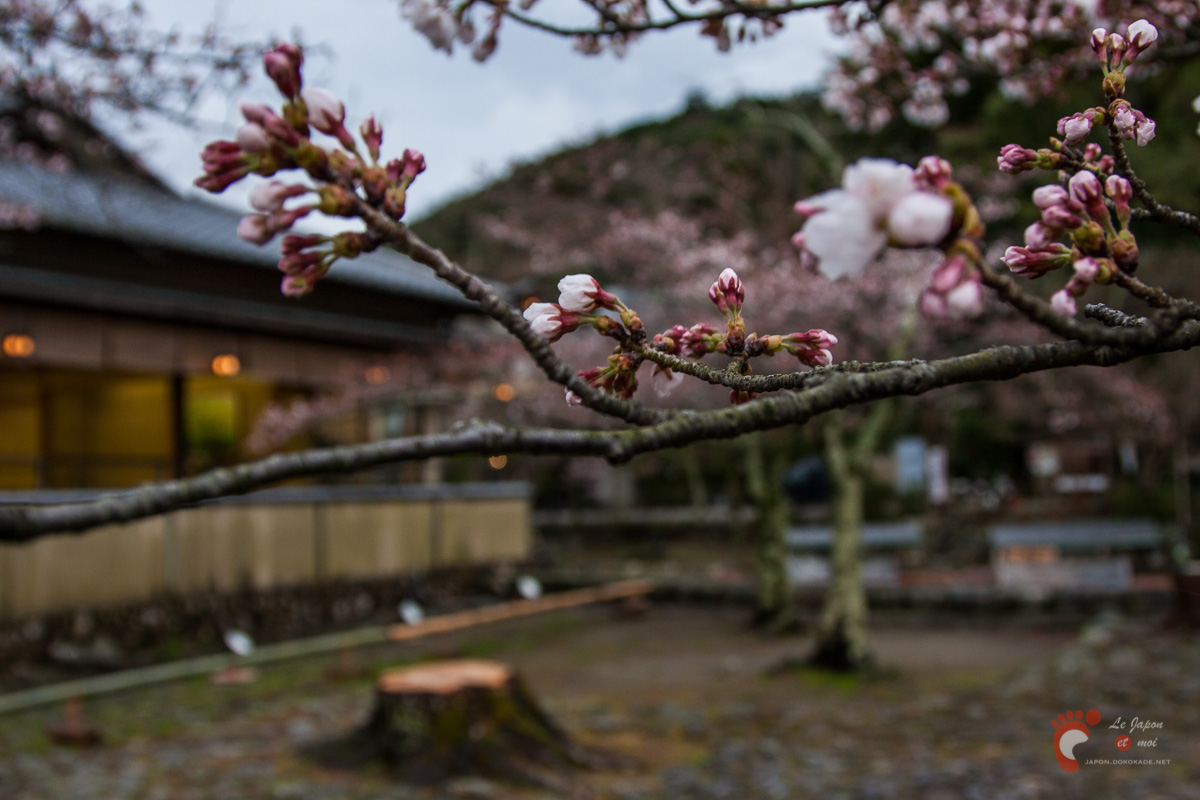 Arashiyama à Kyôto