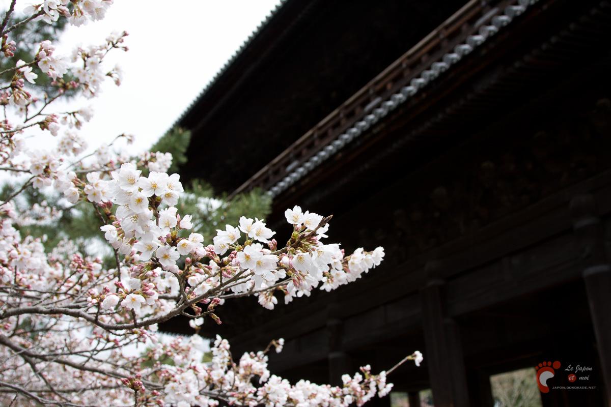 Nanzenji sous les cerisiers - Sanmon