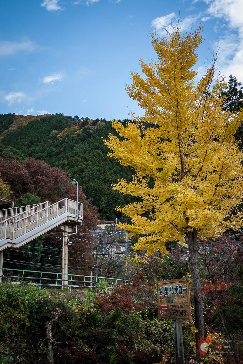 Les environs de la gare de Hato-no-Su