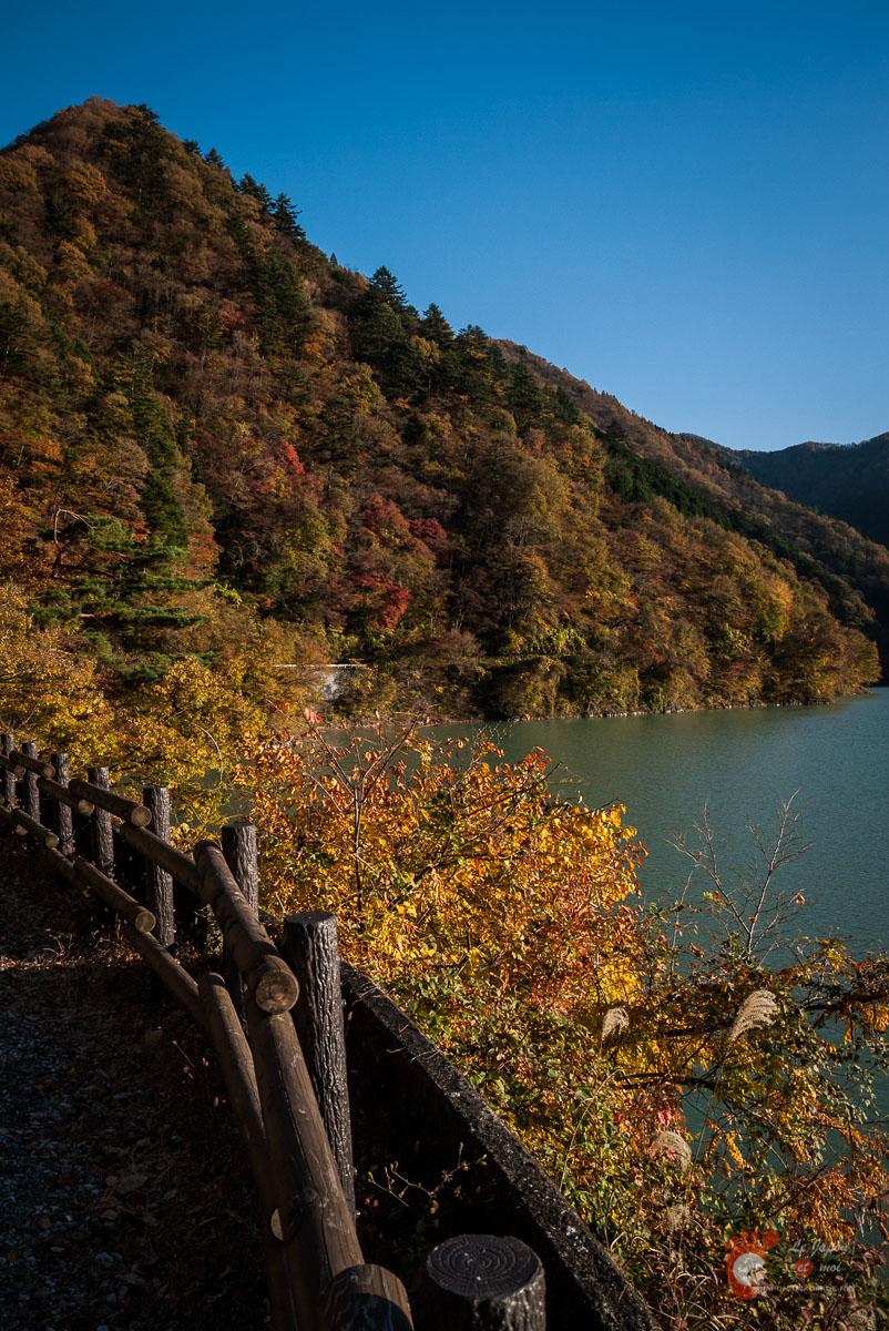Couleurs automnales dans les environs du lac de Okutama