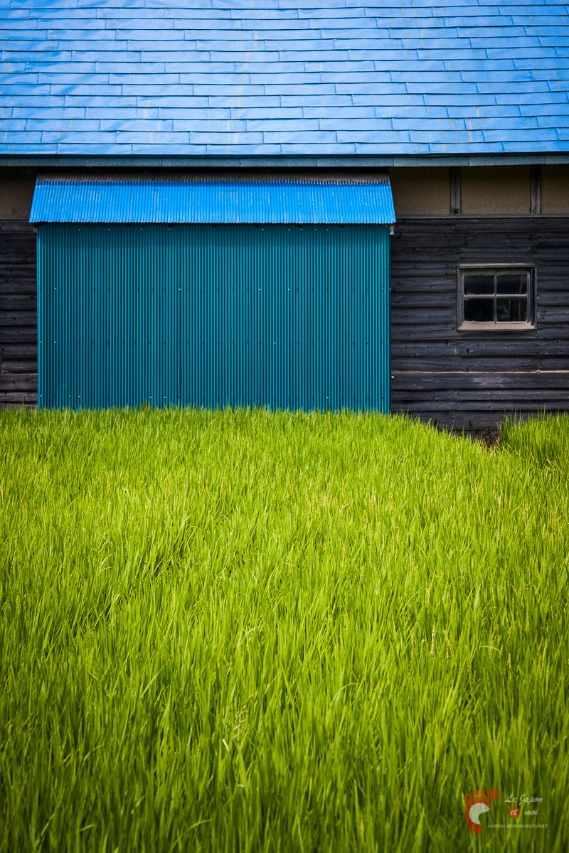 Dans les champs de Tōno